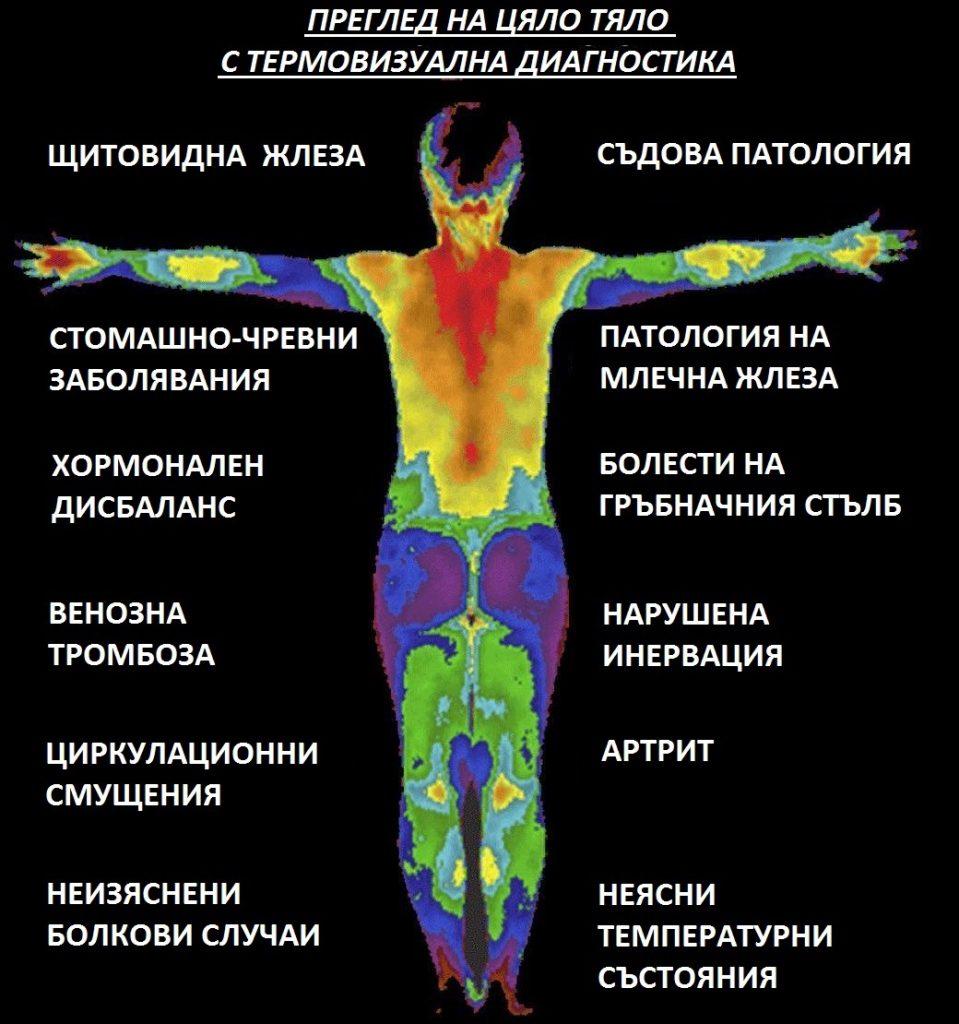 Изследване на цяло тяло с термовизуална диагностика