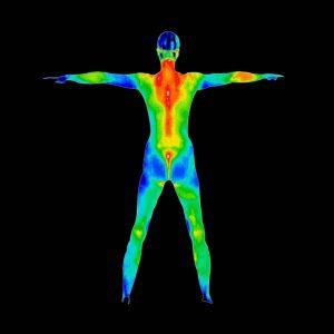 Разпределение на телесната температура - всеки нюанс отговаря на конкретна температурна стойност